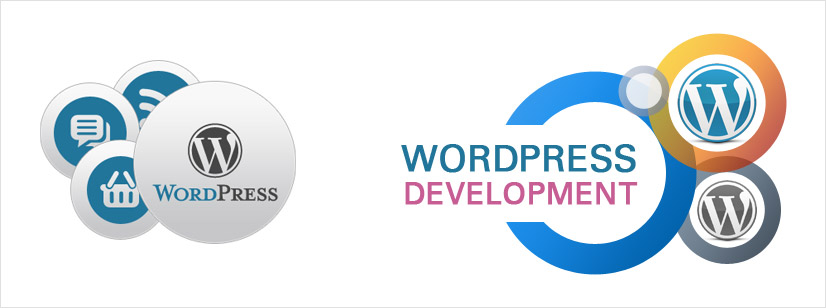freelance wordpress website developer hyderabad